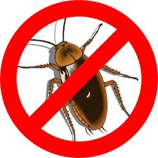 Изображение борьбы с тараканами